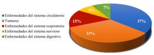Gráfico porcentual de las causas de muerte en España debidas a enfermedad