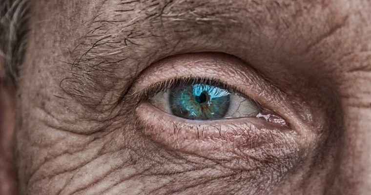Ceguera por degeneración macular asociada… a la dieta
