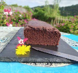bizcocho de chocolate low carb