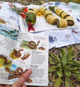 rollitos de foie Felix Rodriguez de la Fuente serpiente de calabacín