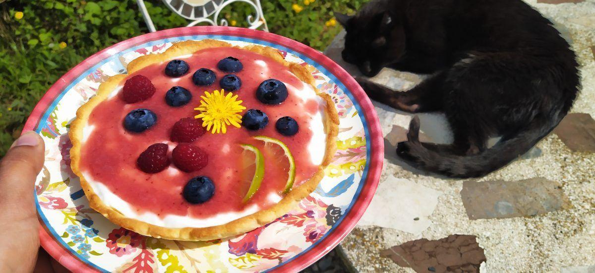 Tartaleta de yogur (terapia para el «Diógenes neveril»)