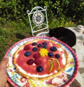 tartaleta de yogur con frutas del bosque low carb sin gluten sin azucar