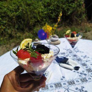 tiamisu de frutas del bosque keto sin azucar sin gluten