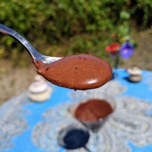 natillas de chocolate sin azucar keto low carb