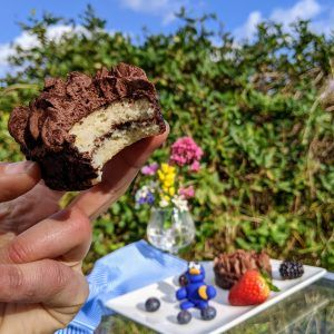 keto phosquitos pastelito de trufa chocolate 100 monstruo de las galletas